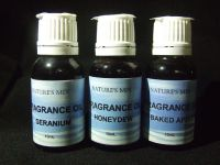 Hot Baked Apple Pie Fragrance Oil - 15mL